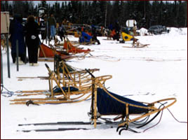 sled line at races